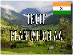 Indie Plantation AA / 1000g