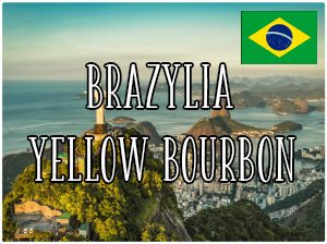 Brazylia Rainha Yellow Bourbon / 1000g